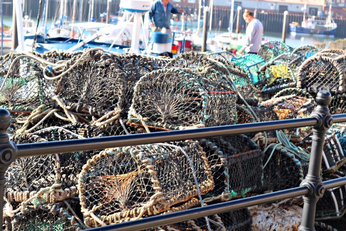 crabnets scarborough