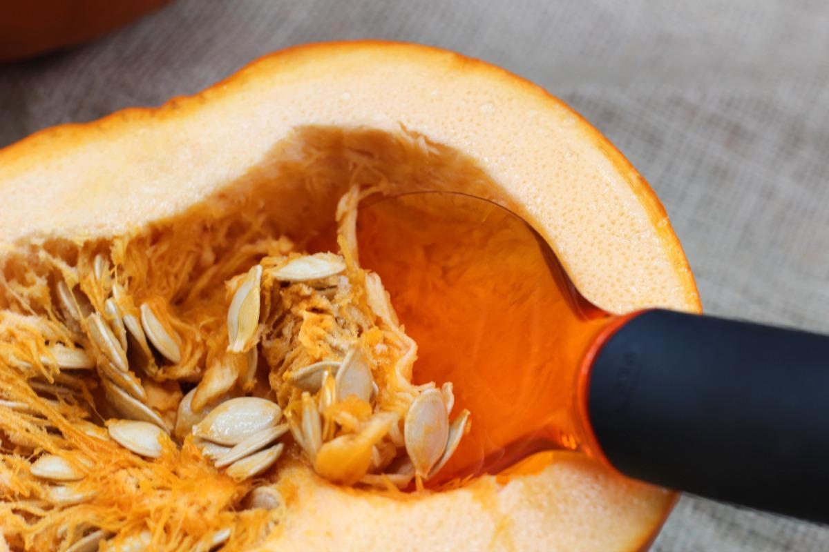oxo fruit scoops